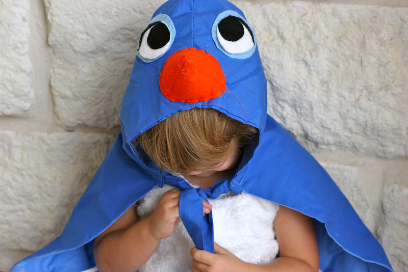 Bluebird Costume Tutorial
