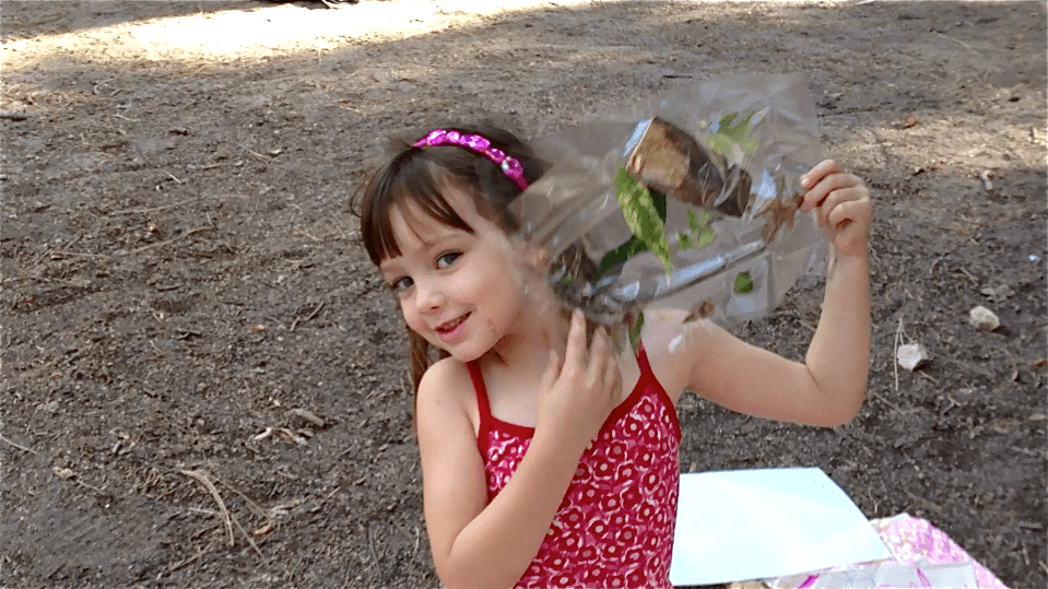 Camping Activity for Kids - sticky nature collage