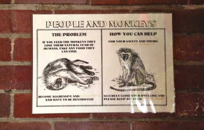 do not feed the monkeys.