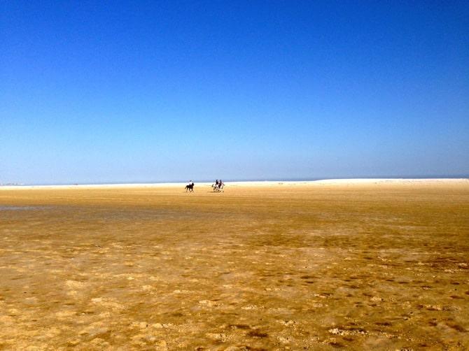 noordhoek beach horseback riding
