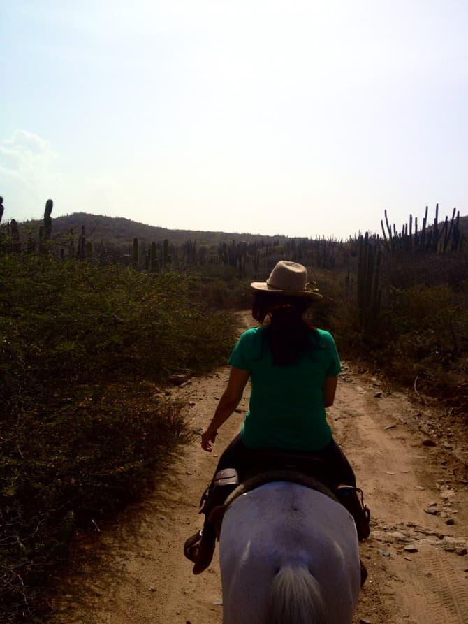 horse back riding aruba 2