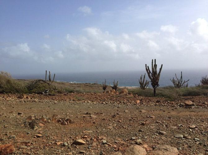 aruba is a desert