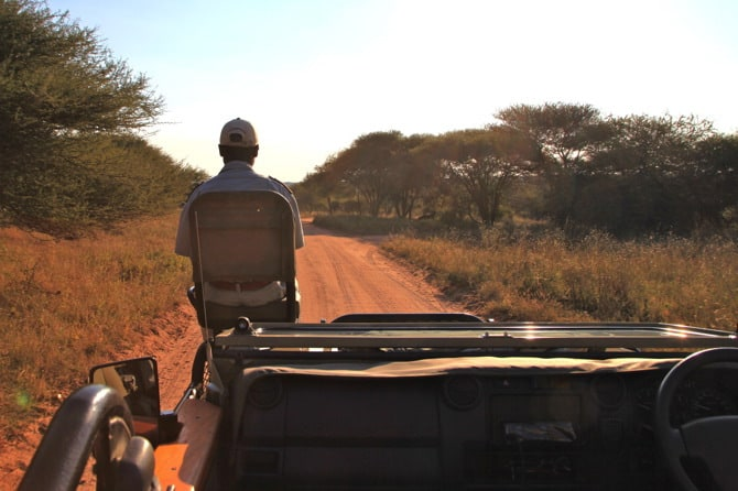 kapama game reserve tracker 2