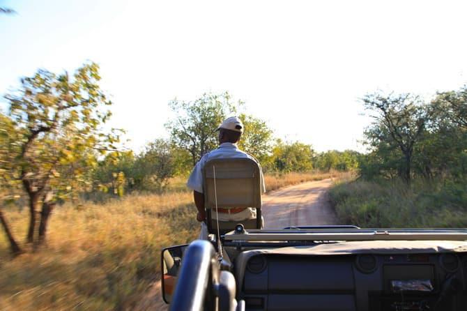 kapama game reserve tracker