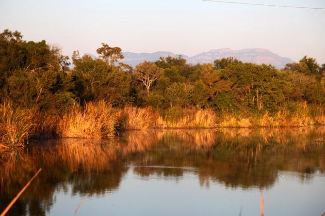 kapama safari lake