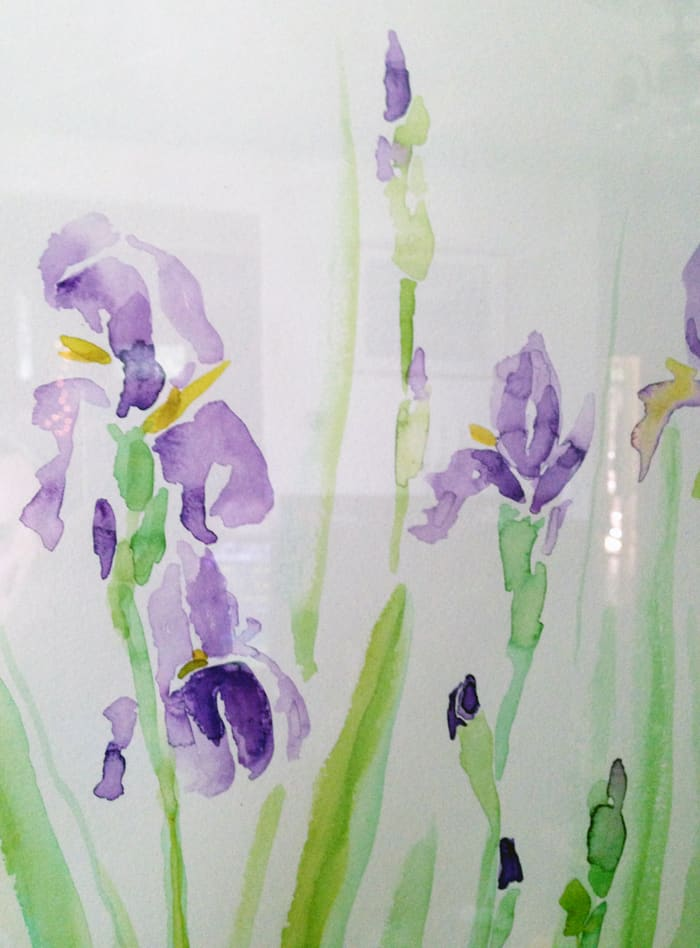 Jacinda Boneau Iris Watercolor