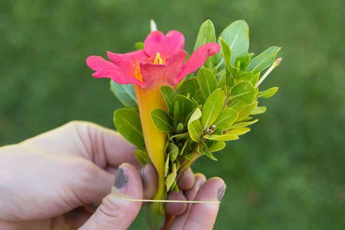 purse-flower-2