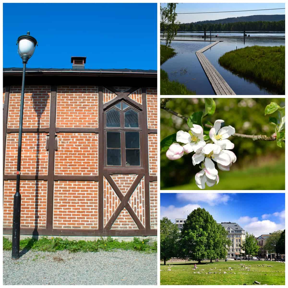 Oslo Pretty Prudent