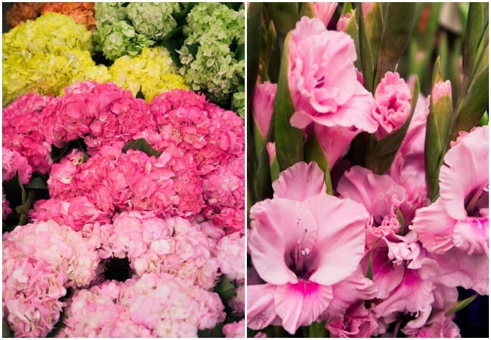 Flower Friday: What's in Season?