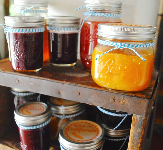 Our Favorite Jam Recipes | Pretty Prudent