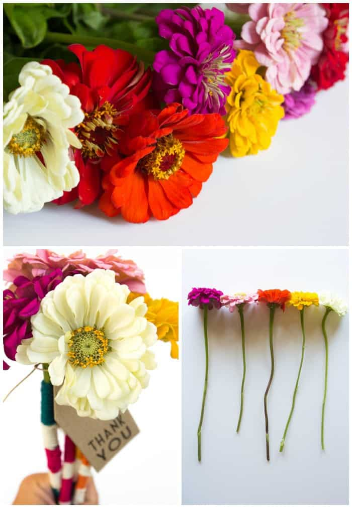 Flower Friday: Yarn Bombing Blooms