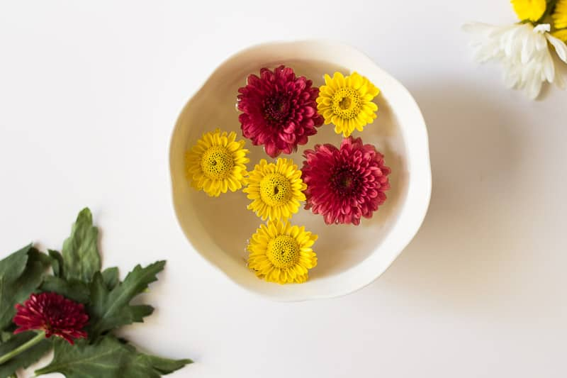 Teacup Flower Garnishes (1 of 11)