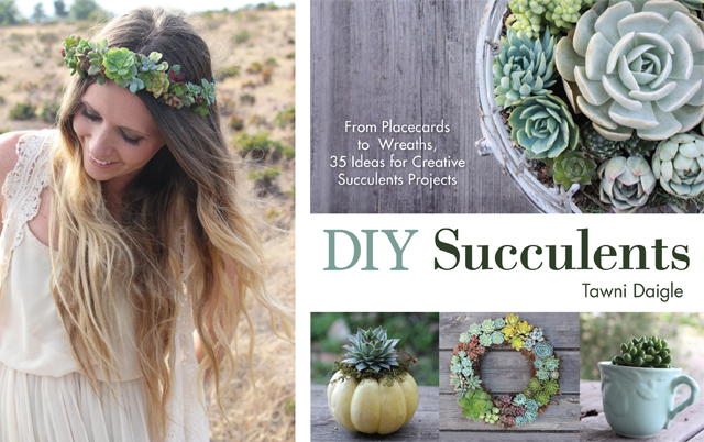 DIY Succulent projects
