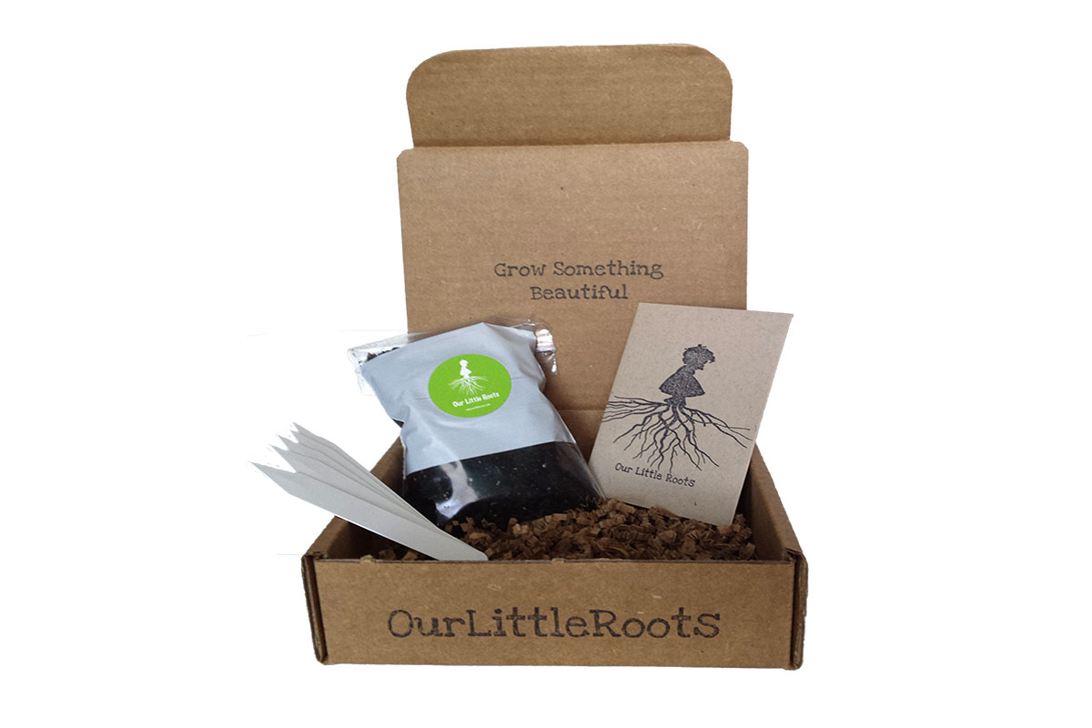 Our Little Roots Subscription Box