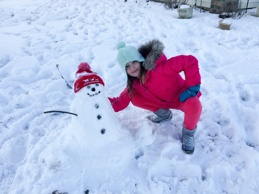 Minnesota Stillwater Snowman
