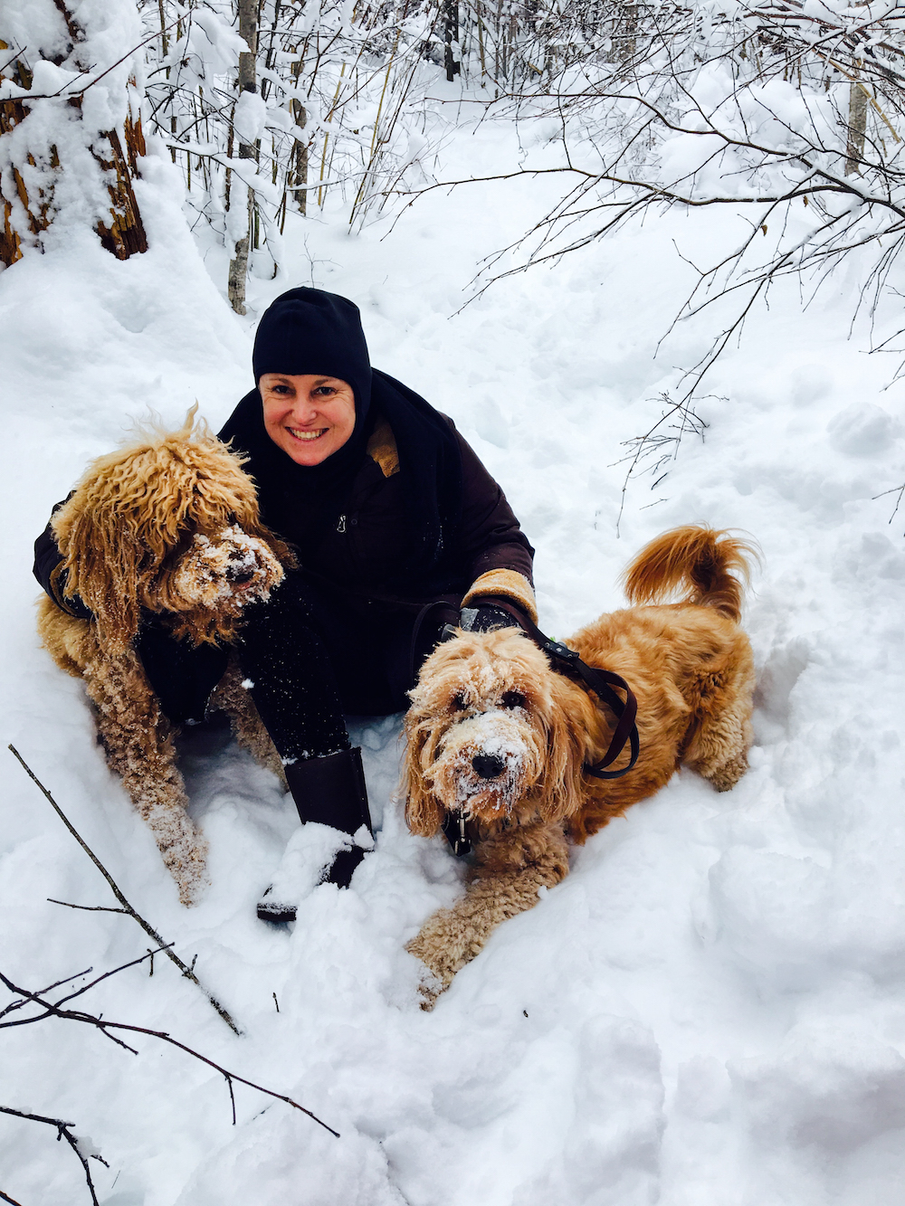 Minnesota Tamy and the dogs