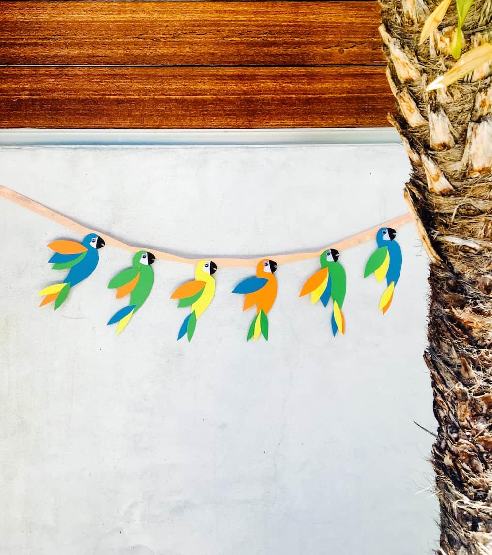 Wild Parrot Garland instagram 2