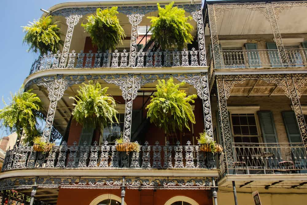 nola-frnech-quarter-ferns-copy