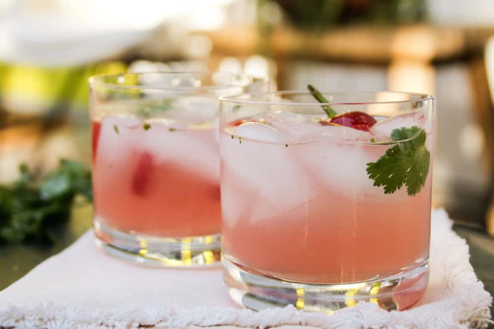 Spicy Watermelon Mezcal Cocktail Recipe 3