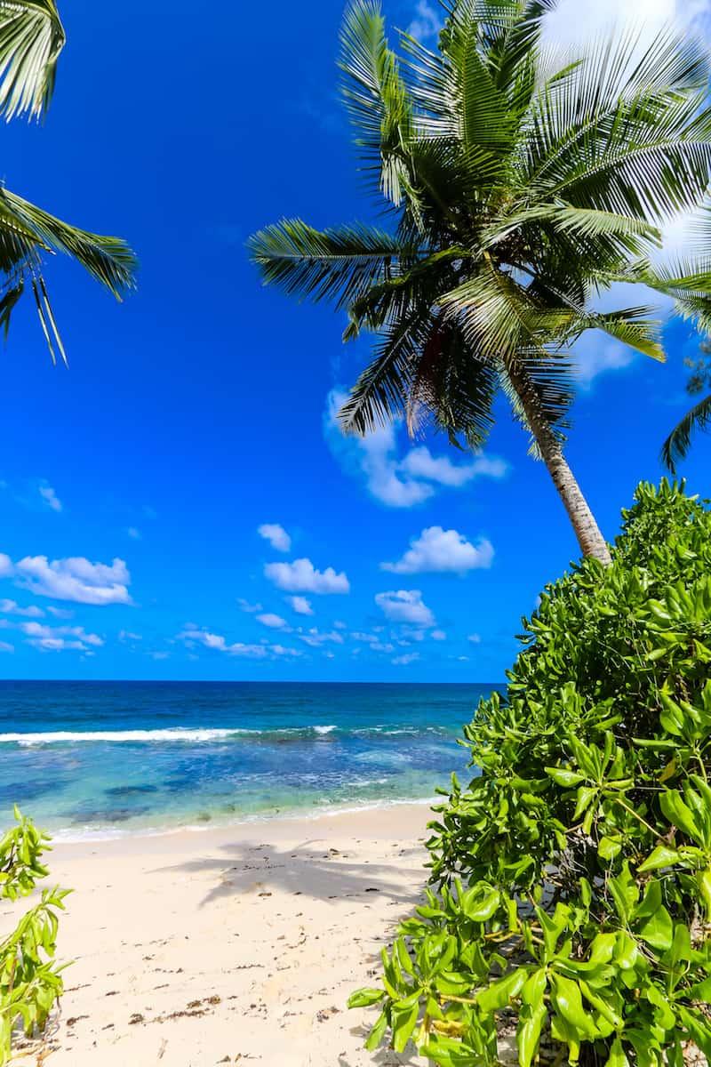Seychelles Itinerary: Beach