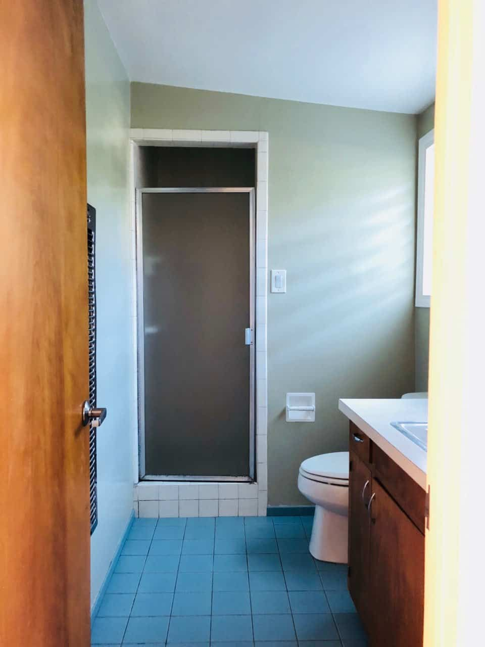 image of mid century modern bathroom before