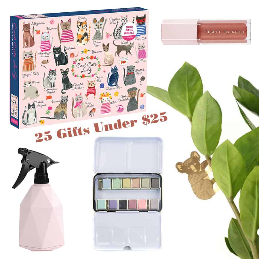 25 Perfect Girlfriend Gifts from $5 to $25