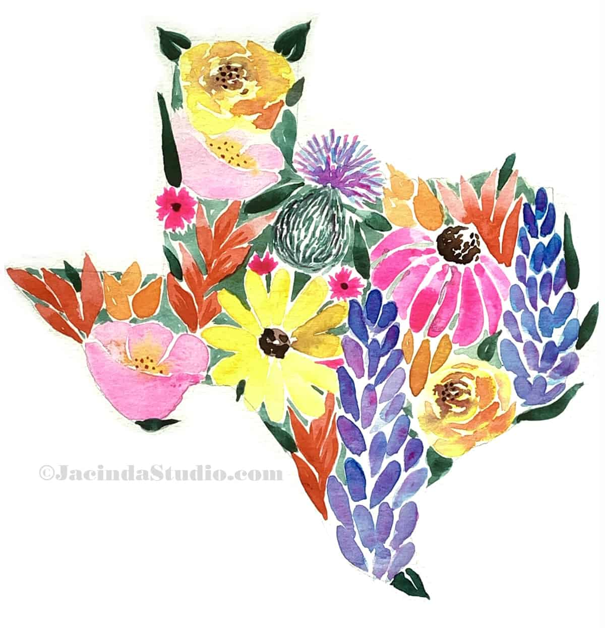 texas wildflower watercolor